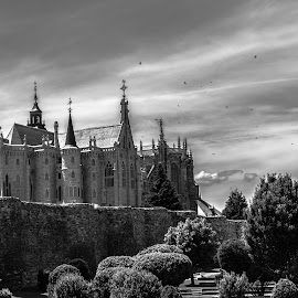 palacio de Gaudí y catedral de Astorga, León by Roberto Gonzalo Romero - Buildings & Architecture Places of Worship ( astorga, gaudi, black and white, palacio, catedral )