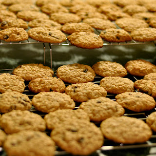 Oatmeal-Peanut Butter-Chocolate Chip Cookie