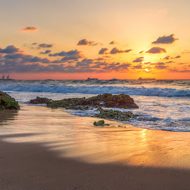 Golden evening by Sergio Gold - Landscapes Waterscapes