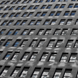 Windows  by Jim Signorelli - Buildings & Architecture Architectural Detail ( windows, building windows )