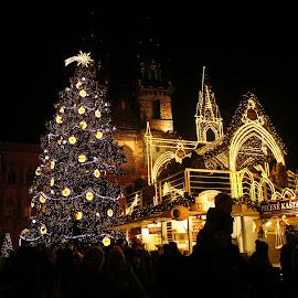 Christmas towers at night by Luboš Zámiš - Uncategorized All Uncategorized