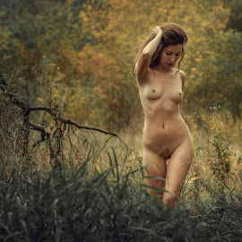 Beauty of autumn by Dmitry Laudin - Nudes & Boudoir Artistic Nude ( body, figure, grass, autumn. beauty, yellow, girl. nude )