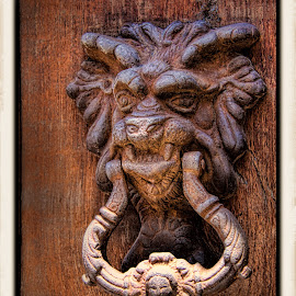 doorknocker, mexico by Jim Knoch - Artistic Objects Antiques