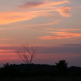 Sunset by Tina Marie - Landscapes Sunsets & Sunrises ( night photo, night view, night scene, sunset, silhouettes, night, night shot, night sky, nightscape,  )