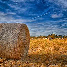 Enjoying The Last Sunrays by Marco Bertamé - Landscapes Prairies, Meadows & Fields ( clouds, field, sky, dry, blue, sunset, hay bale, ¨condesation trail, shadw,  )