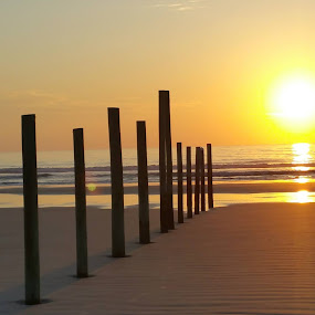 Daytona Beach Sunrise by Beth Bowman - Landscapes Beaches (  )