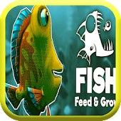 Feed & Grow a fish