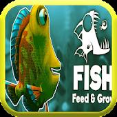 Feed & Grow a fish