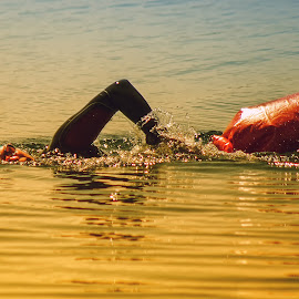 in the rays of sunset by Tomasz Marciniak - Sports & Fitness Swimming ( sunset, sport, lake, swimming )