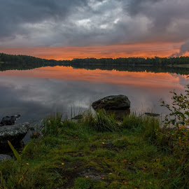 by Bojan Bilas - Landscapes Sunsets & Sunrises ( reflection, nature, waterscape, sunset, suomi, finland, forest, landscape, rauma )