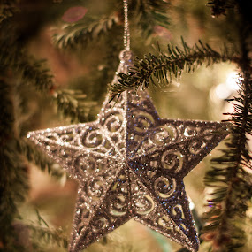untitled by Mary Phelps - Public Holidays Christmas ( canon, 2017, tree, ornament, star, christmas, bokeh,  )