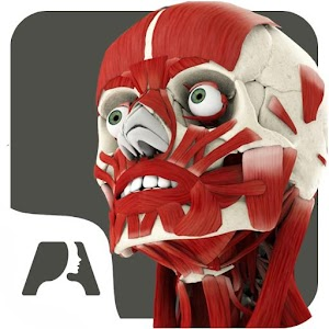 Download Pocket Anatomy APK