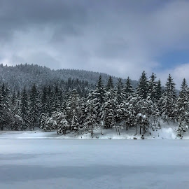 by Mario Horvat - Instagram & Mobile iPhone ( rakitna, winter, slovenija, cold, slovenia, outdoor, snow, trees, forest, lake, iphone )