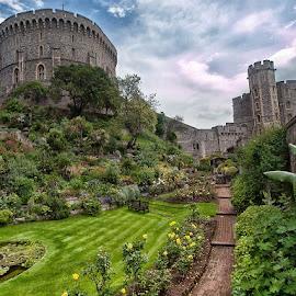 Windsor Castle, UK by Mat Tmil - Buildings & Architecture Public & Historical