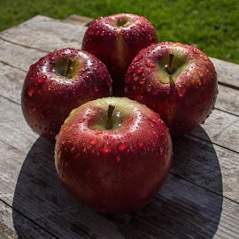 Apples by Tracey Dolan - Food & Drink Fruits & Vegetables