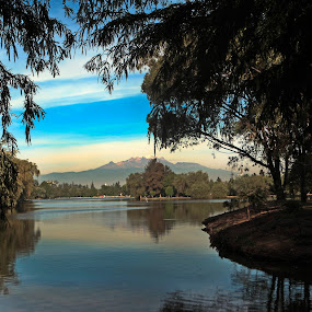 Trees, Volcano and Lagoon by Cristobal Garciaferro Rubio - Nature Up Close Trees & Bushes ( water, reflection, lagoon, trees, lake, leaves, branches )