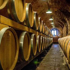 Wine cellar by Annemarie Homan - Artistic Objects Other Objects ( wine cellar, wine, barrels, italy, winery )