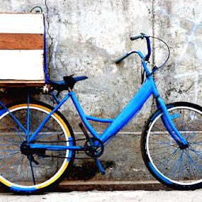 The Blue Bike  by Hendy Leonardo - Novices Only Objects & Still Life