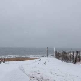 Entrance to Beach During Snow Storm by Kristine Nicholas - Novices Only Landscapes ( water, sand, waterscape, snowy, sea, fences, ocean, beach, seascape, atlantic, landscape, storm, snowing, footprints, fence, winter, cold, snow, weather, wet, landscapes )