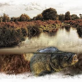 Give a man a fish by JCstudios by John Cuthbert - Mixed Media All Mixed Media ( wall art, angling, stream, carp, fish, jcstudios, canvas, lake, fishing, pond )