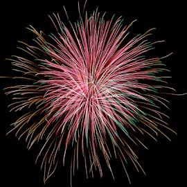 by Matt Myers - Public Holidays July 4th ( night photography, firework, fireworks )