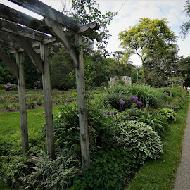 by Denise O'Hern - City,  Street & Park  City Parks