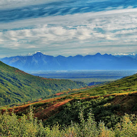 Hatcher Pass by Patricia Phillips - Landscapes Travel ( alaska hatcher pass )