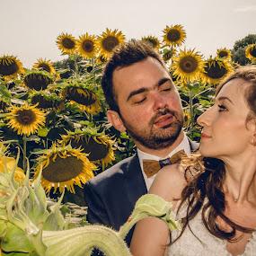 Love by Jo Polyxromos - Wedding Bride & Groom ( love, sunflowers, wedding, greece, bride, groom )