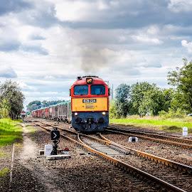 628-224 by Nagy Attila - Transportation Trains ( 123 )