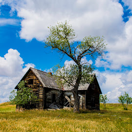 Remnants by Bill Phillips - Buildings & Architecture Decaying & Abandoned ( history, buildings, western, architecture, landscape, prairie )