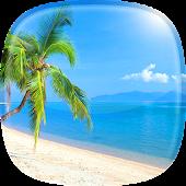 Hintergrundbilder Strand 🏖️ Tropisch Hintergründe