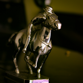 The Tiny Ride by Ajith Iddya - Artistic Objects Other Objects ( artistic objects, artistic, car logo, antique, horse riding,  )