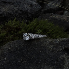 Diamond on the rock by Darian Hughes - Artistic Objects Jewelry ( ring, diamond, jewelry, grey, rock, artistic objects,  )