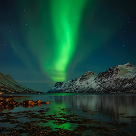 The Magical Lights by Pierre Husson - Landscapes Starscapes ( winter, aurora borealis, ersfjordbotn, nightscape, norway )