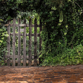Not so Secret Garden by Johan Nieuwoudt - City,  Street & Park  Neighborhoods