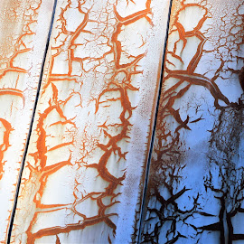 Up on the Roof by Leah Zisserson - Abstract Patterns ( orange, barn, metal, damage, tin roof, rust )