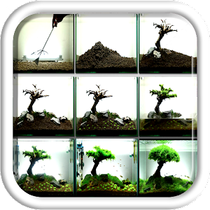 Aquascape design android apps on google play - Design aquasacpe ...