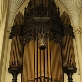 Pipe Organ by Carl VanderWouden - Artistic Objects Musical Instruments