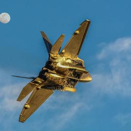 Moonshine Raptor by Tom Anderson - Transportation Airplanes ( lockheed martin f-22 raptor, pilots, california, planes o, chino )