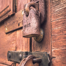 Locked by Darrell Evans - Artistic Objects Other Objects ( door, staple, hasp, old, metal, oxidation, decay, locks, padlock, building, outdoor, rust, security, closed, lock, wood, locked )
