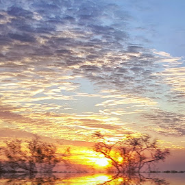 Sunrise by Victor Sanchez - Instagram & Mobile Android ( clouds, ranch, android, texas, sunrise )