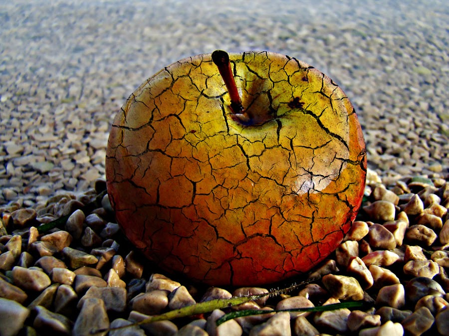 apple by Neven  Jović - Digital Art Things ( - )