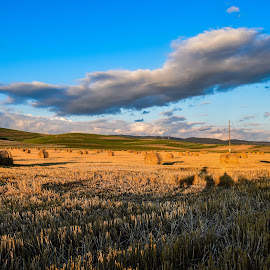 Miercure Ciuc - ROMANIA by Bogdan Claudiu - Landscapes Prairies, Meadows & Fields ( field, clouds, orange, sky, blue, hay, romania )