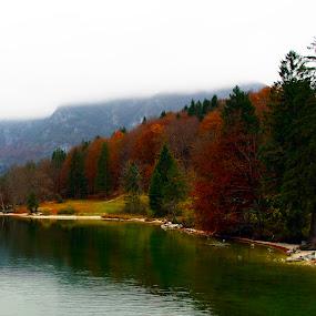 Bohinj by Mrak Rado- Fotograf - Landscapes Beaches ( water, autum, lake, lake bohinj, bohinj )