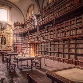 Biblioteca Palafoxiana by Ole Steffensen - Buildings & Architecture Other Interior ( juan de palafox y mendoz, mexico, puebla, library, biblioteca palafoxiana, museum )