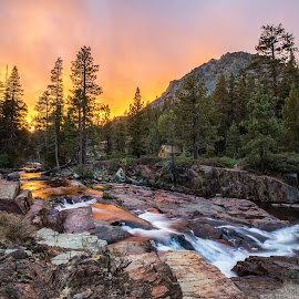 Glen Alpine Falls by Angel McNall - Landscapes Mountains & Hills ( glen alpine falls, creek, waterfall, forest falls, fallen leaf lake, lake tahoe, sierra nevadas, river )