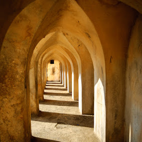 Golconda  by Gunbir Singh - Buildings & Architecture Architectural Detail ( golconda, symmetry, gunbir, light, shadows )