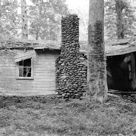 Forgoten by Thomas Shaw - Buildings & Architecture Decaying & Abandoned ( roof, window, tree, grass, black and white, door, stone, house, porch, rocks, chimney, decaying, abandoned )