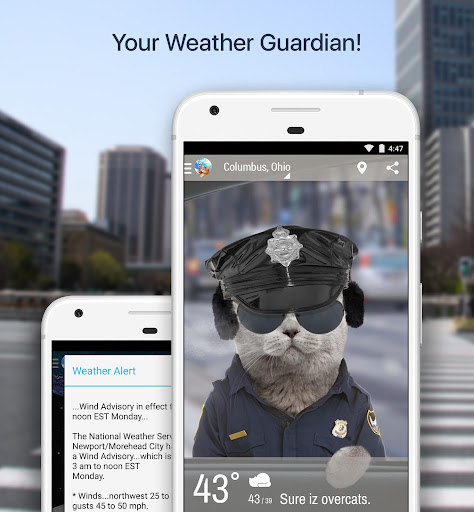 Weather Whiskers App & Widget For PC
