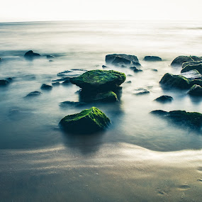 All of us are waves on the ocean of divine consciousness.   -Swami Kriyananda by Amjad Ca - Landscapes Beaches (  )